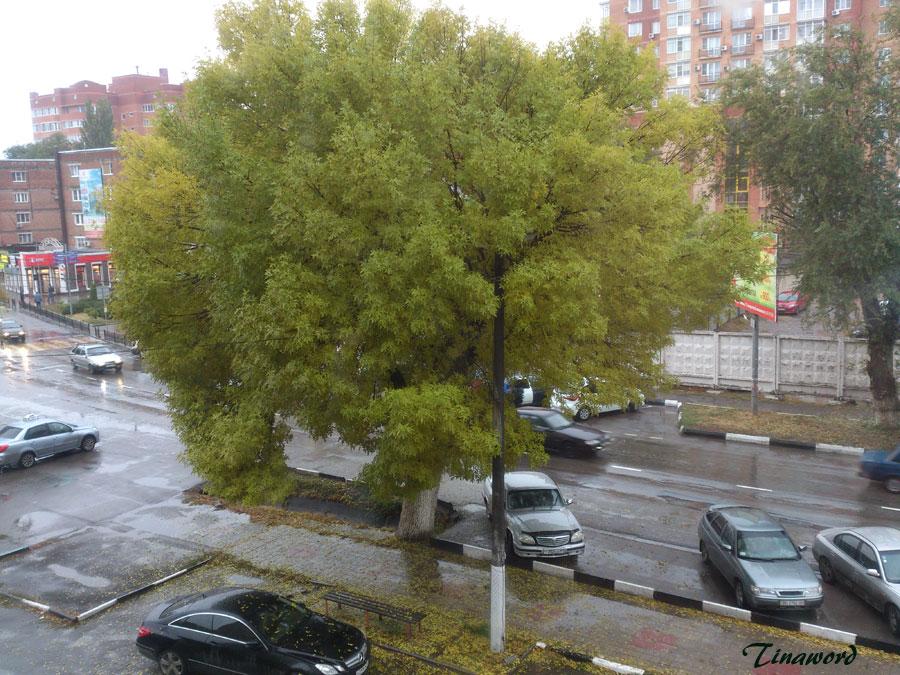 осень.jpg