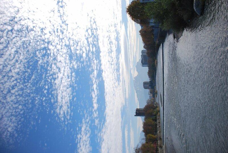 Владикавказ, река Терек