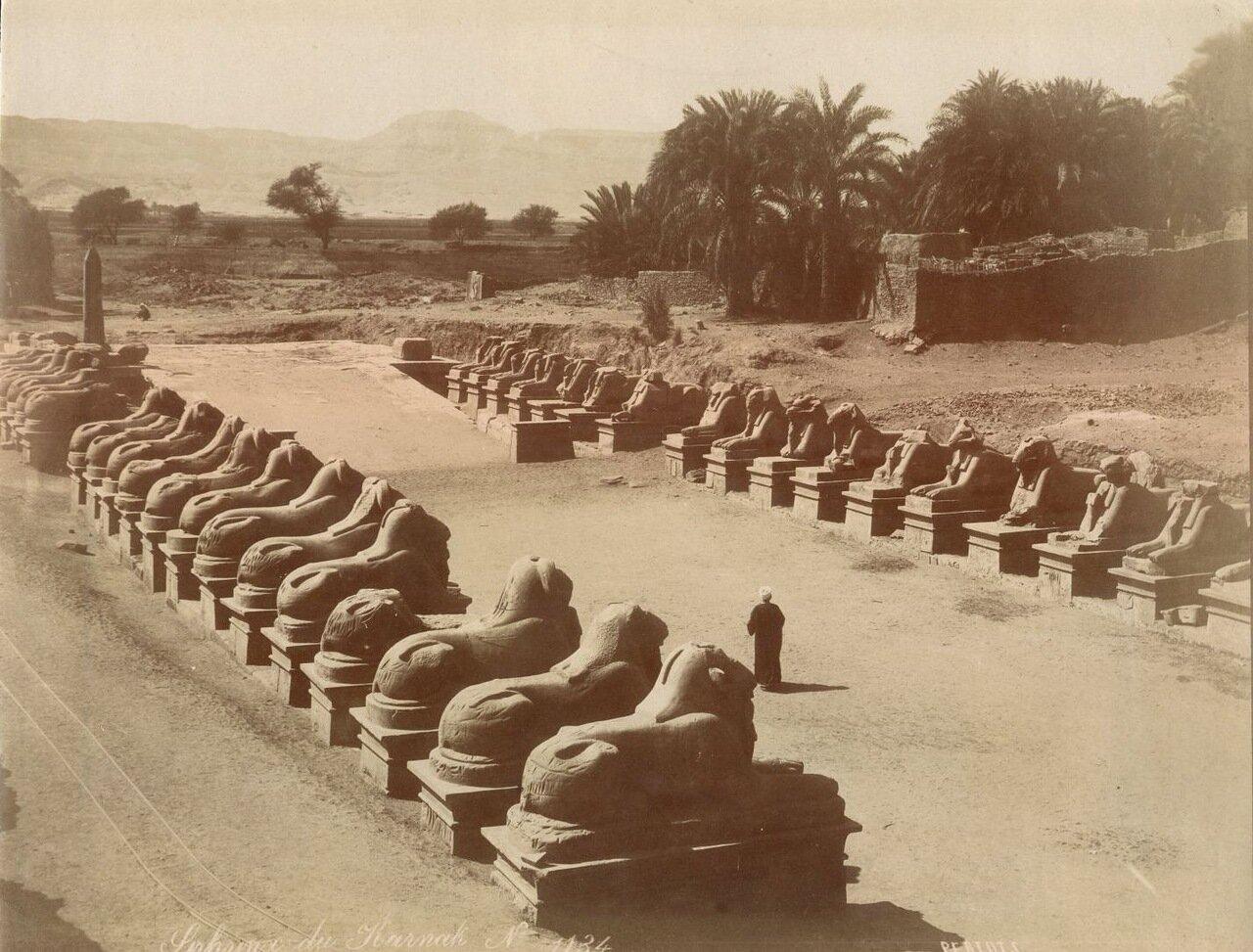 Фивы. Аллея сфинксов у входа в Карнакский храм