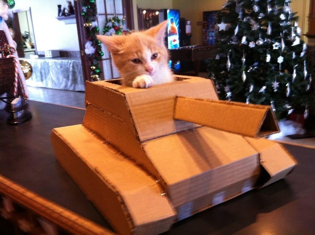 как сделать танк из картона домик для кота своими руками