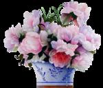 flower_2d.png