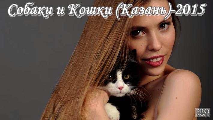 Собаки и Кошки (Казань)-2015.Формат ПНГ