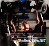 Книга Тренировка грудных мышц и плеч.