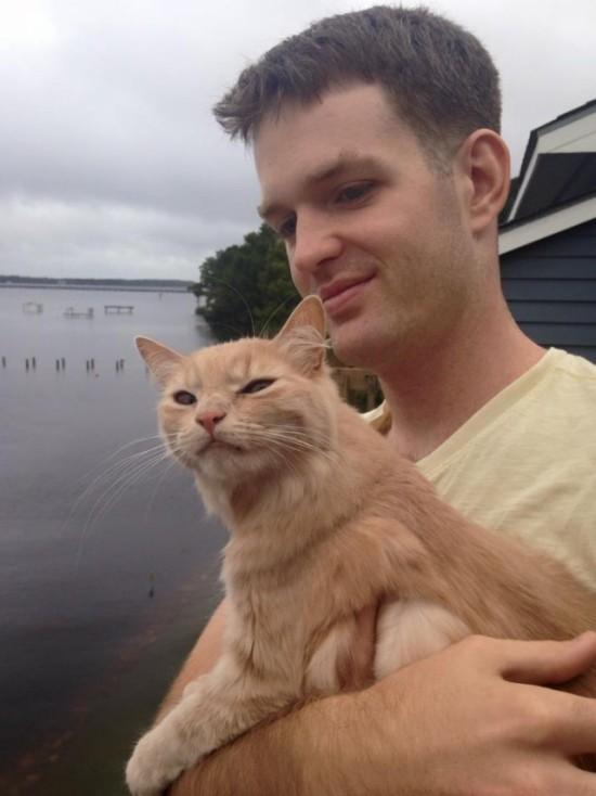 Кот впервые на улице