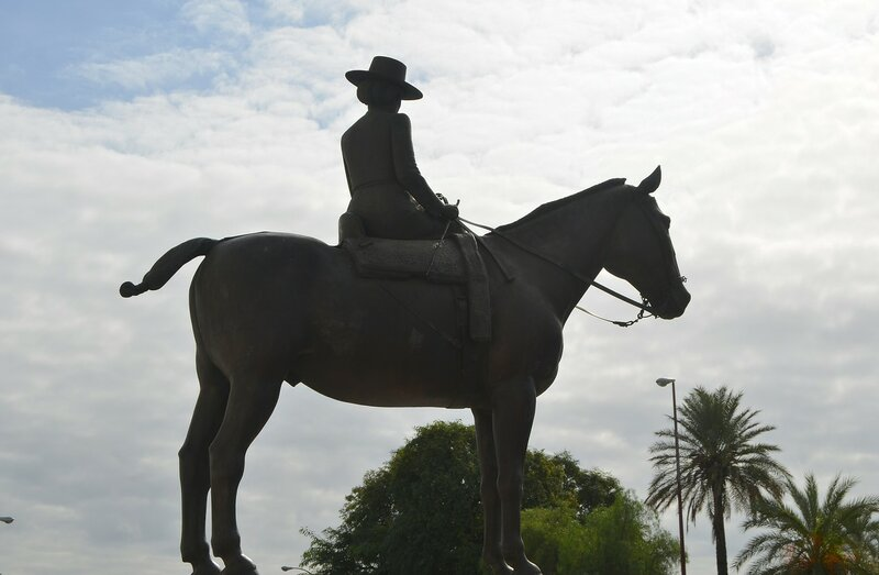 женщина на коне