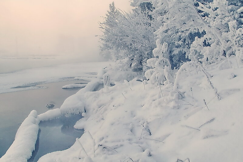 Морозное  утро...