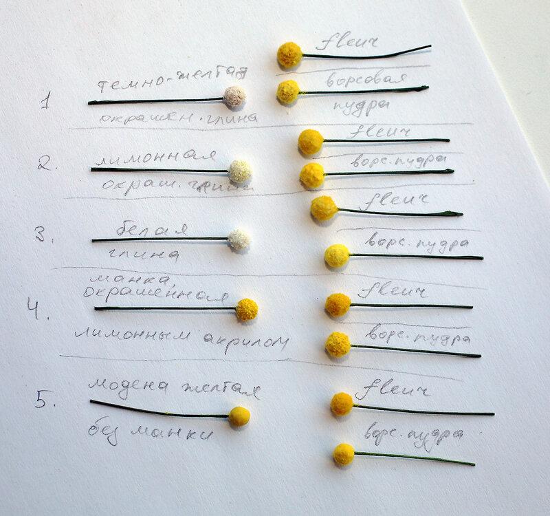 06. Сравнение разных мимозинок