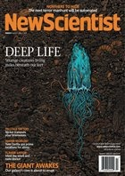 Журнал New Scientist (27 апреля), 2013 / US