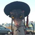 https://img-fotki.yandex.ru/get/16191/4082677.1/0_f5362_18412780_L.jpg