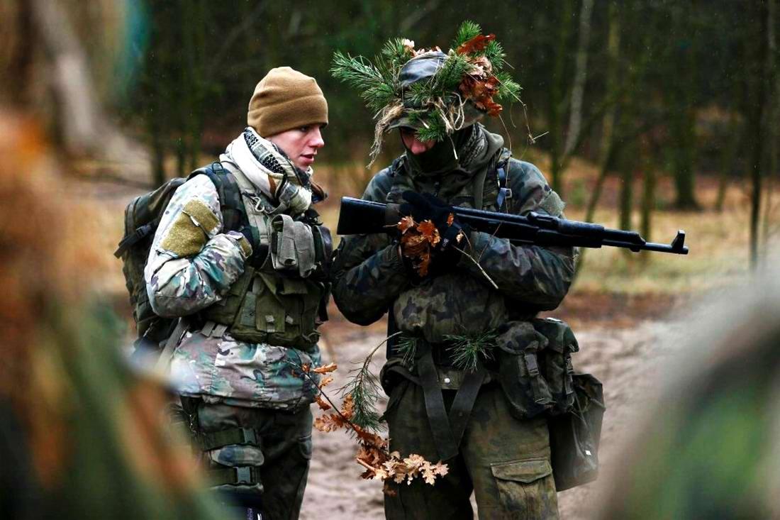 Военизация по-польски: Назло Европе и в угоду Америке (1)