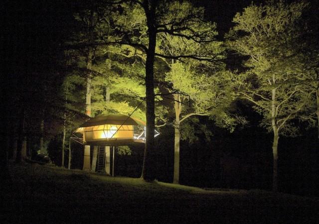 Tree house280.jpg