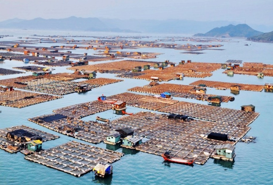 Плавающий город «морских цыган» в Китае 0 11e9e7 5ff2dc8f orig