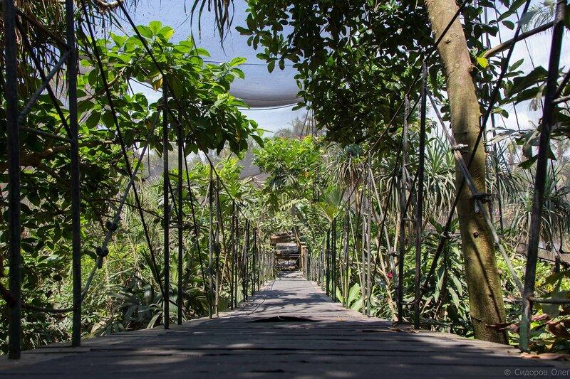 Бали ч1-63.jpg