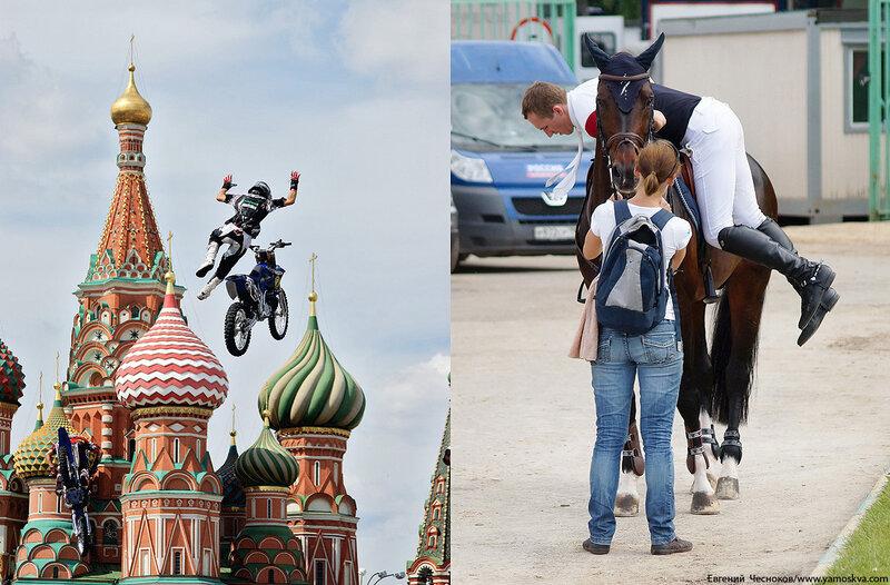 Лошади.35..jpg
