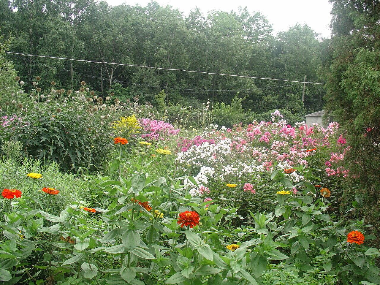 Владивосток, Ботанический сад,