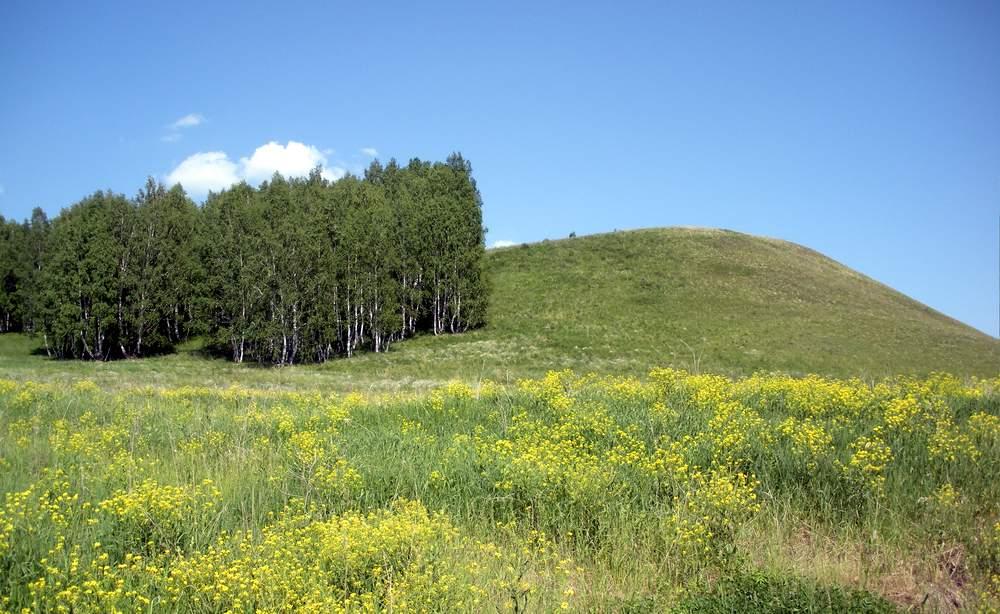 Памятник природы Нарат-Астинский бор