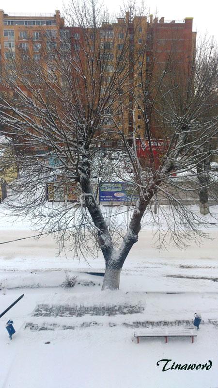 зима-2014-2.jpg