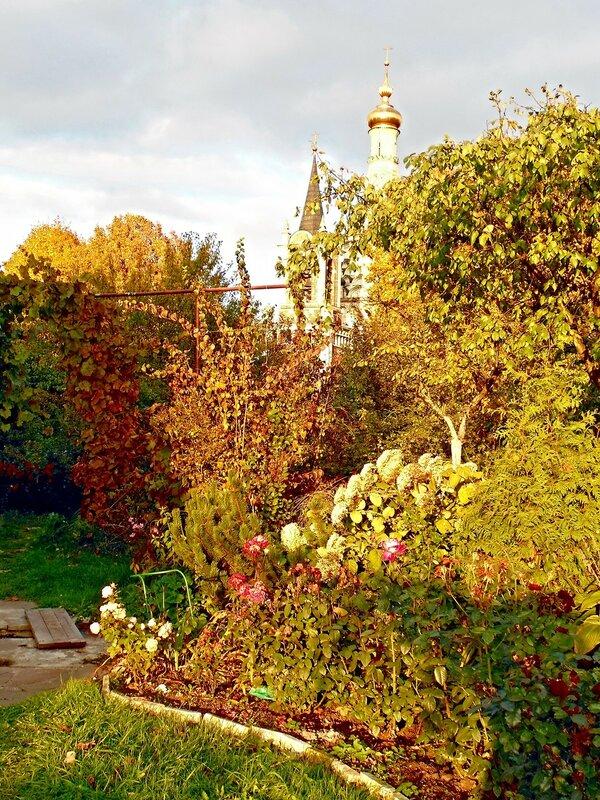 Осенние зарисовки в райском садике