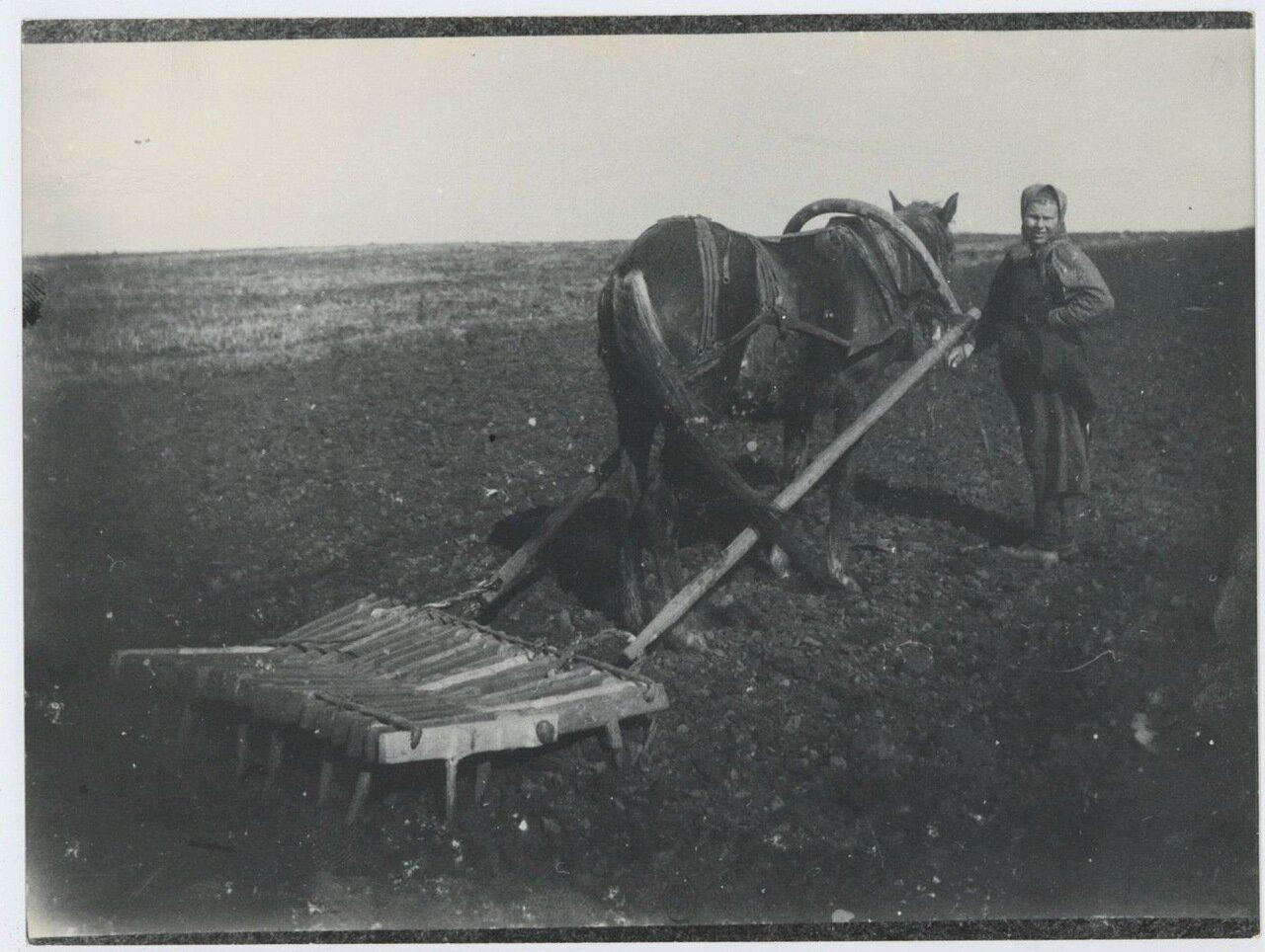 1917. Женщина-пахарь