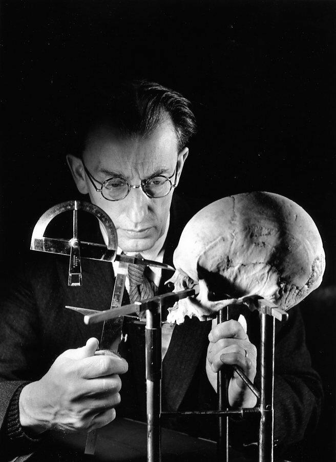 1942. Профессор Анри Валуа,  Лаборатория антропологии