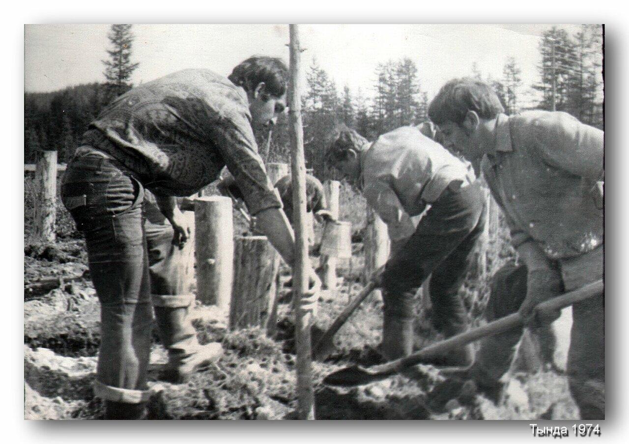 12. Лето 1974 года. Студенческий Строительный Отряд Гелиос