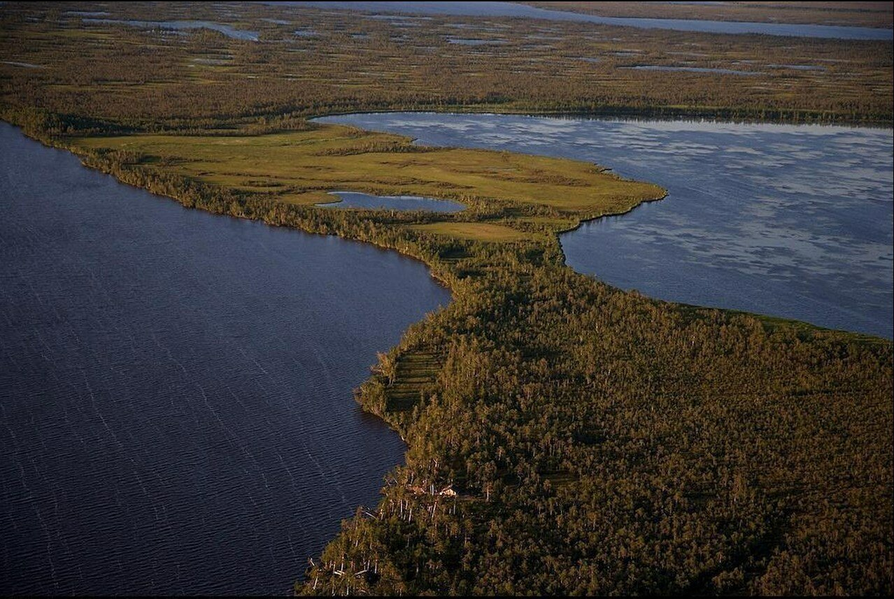 22. Водно-болотистая местность вблизи Сургута