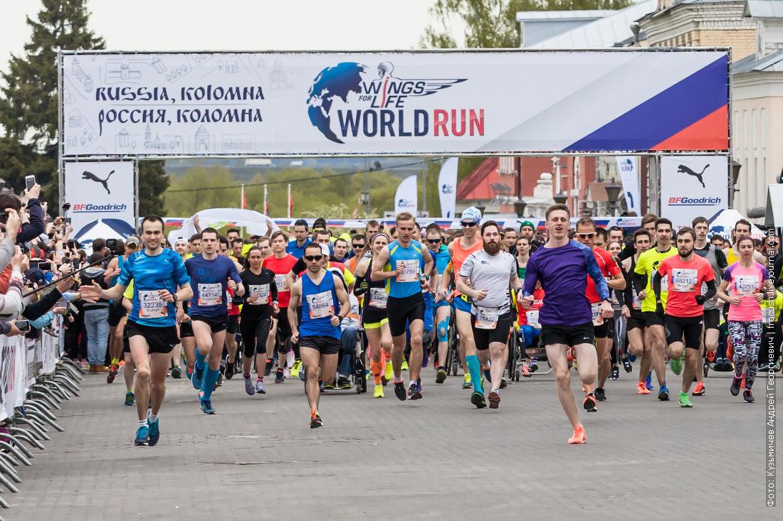 Россия Wings for Life World Run 2017