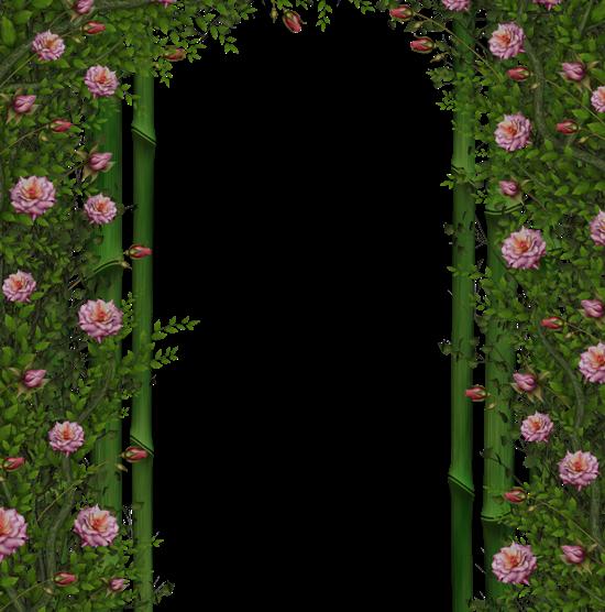Фоны PNG. Арки и растения.