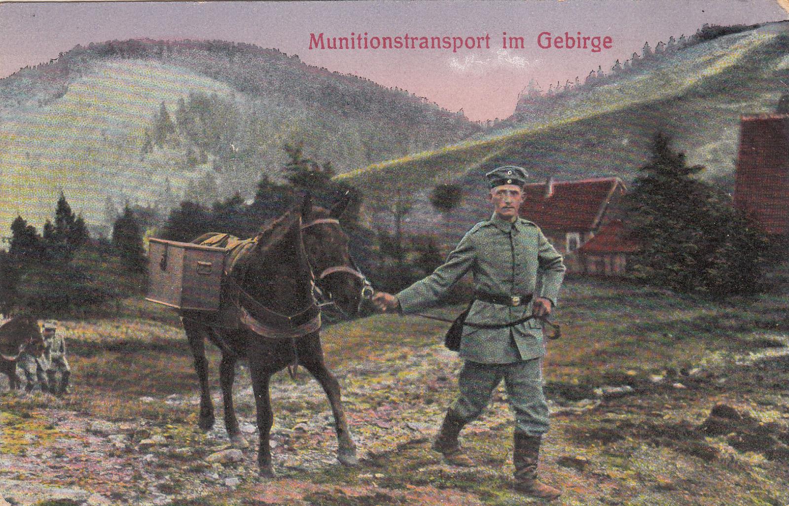 alte-AK-Feldpost-Munitionstransport-im-Gebirge-Pferde-ca.jpg
