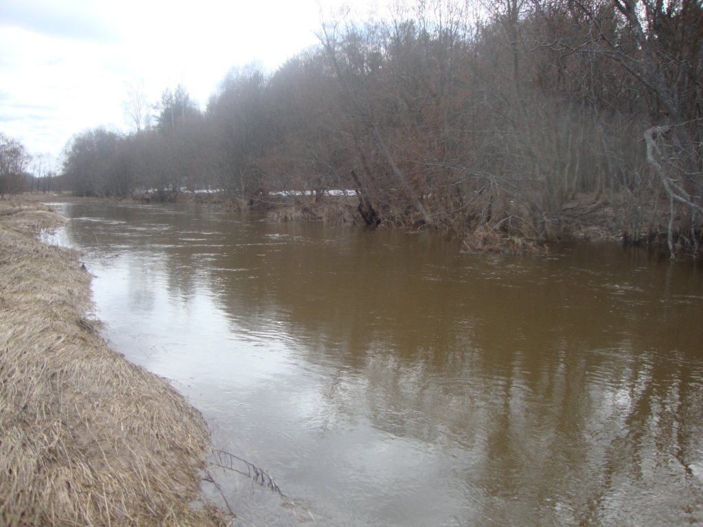 Река Берёза, вешние воды.