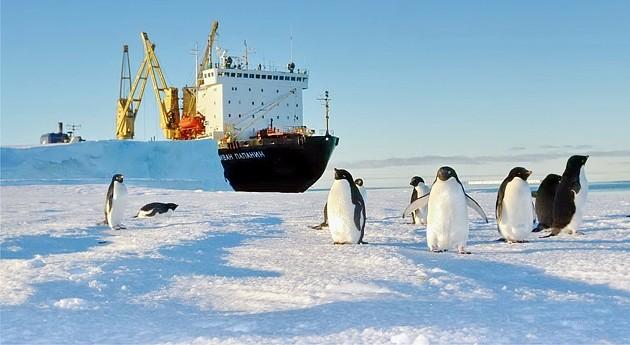 Открытки. С Днем полярника! Пингвины у корабля!