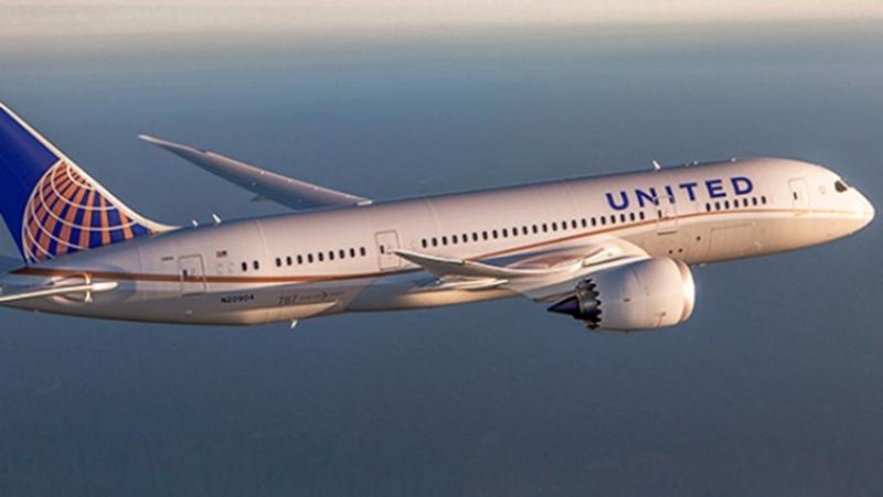 Наборту United Airlines погиб гигантский кролик