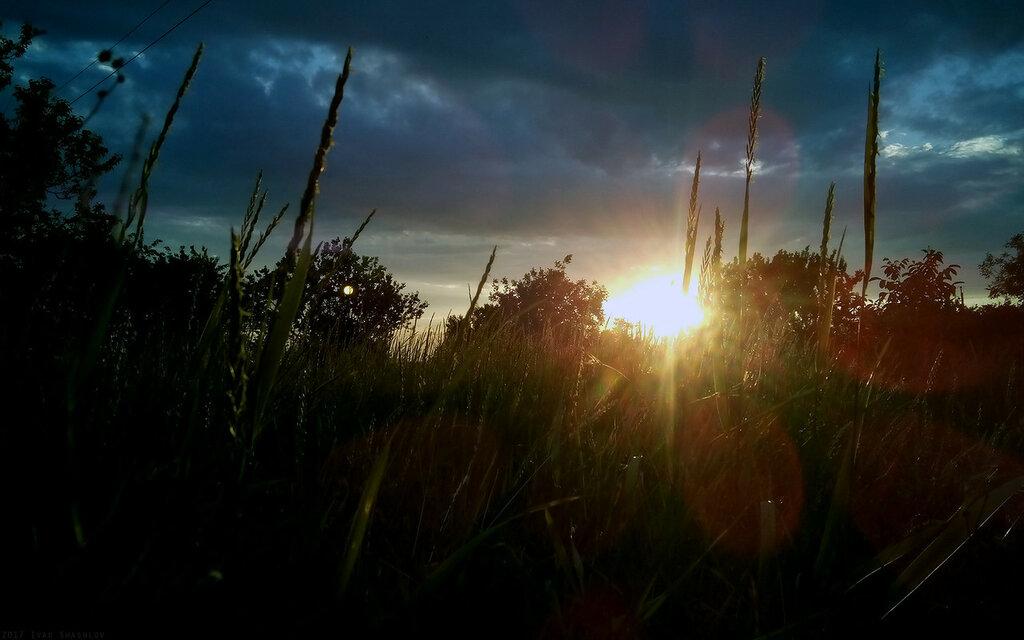 Июньский закат