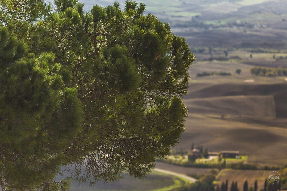 Настоящая Италия. Часть вторая