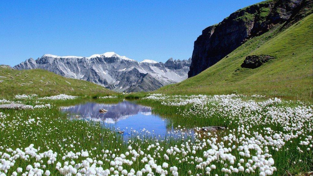 Красота природы Швейцарии