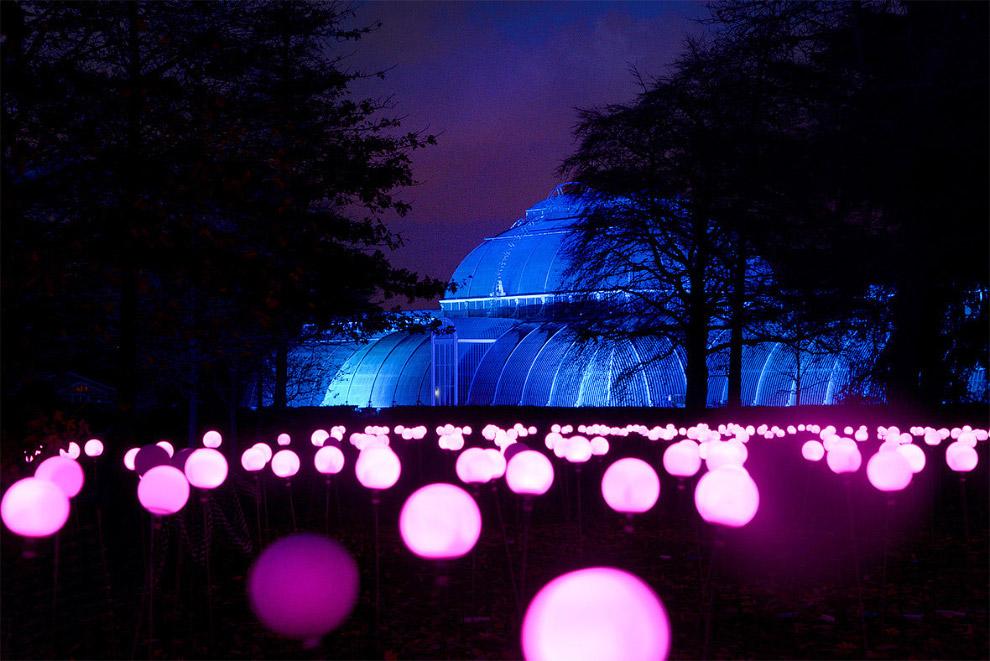 4. В обычные дни Королевские ботанические сады Кью — это, без преувеличения, самый красивый парк Лон
