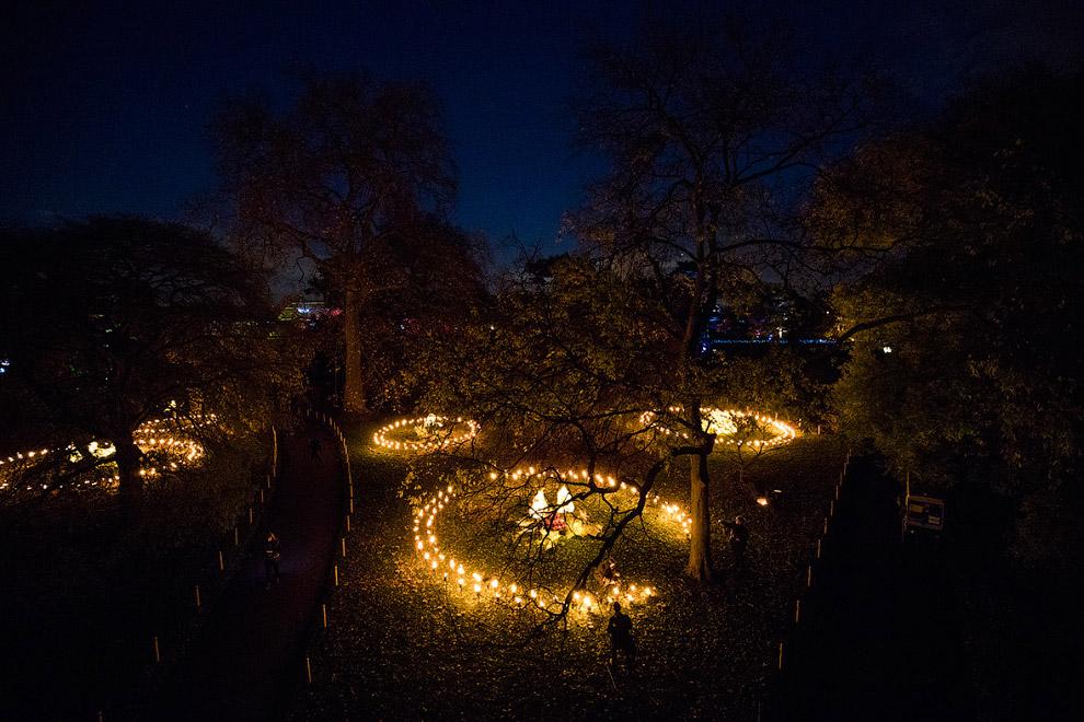 11. Внутри пчелиного светового улья. (Фото Jack Taylor):
