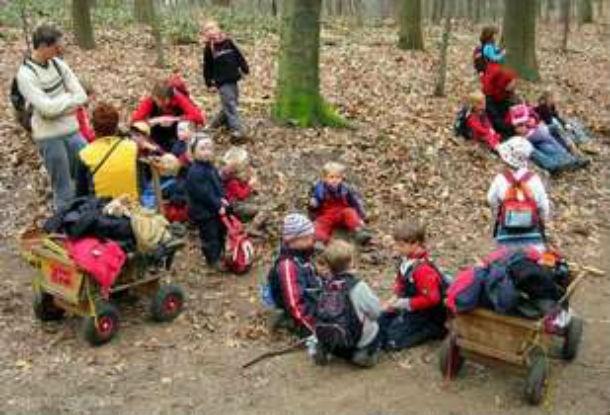Лесной детсад представляет собой учреждение для детей дошкольного возраста от трех до шести лет,