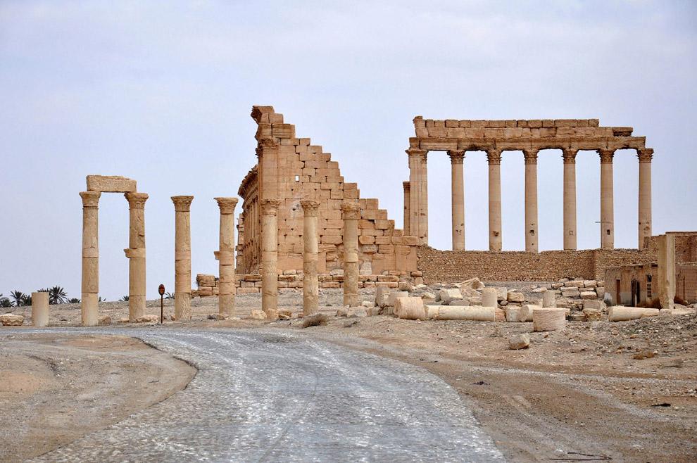 4. Видна наша военная техника на фоне разрушенной Пальмиры. (Фото Omar Sanadiki | Reuters):