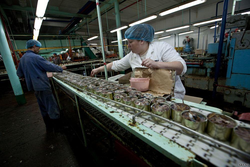 Экс-руководитель курильского рыбокомбината засудят задолги по заработной плате