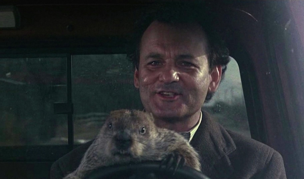 ВЛенинградском зоопарке скончался популярный сурок покличке Фрол