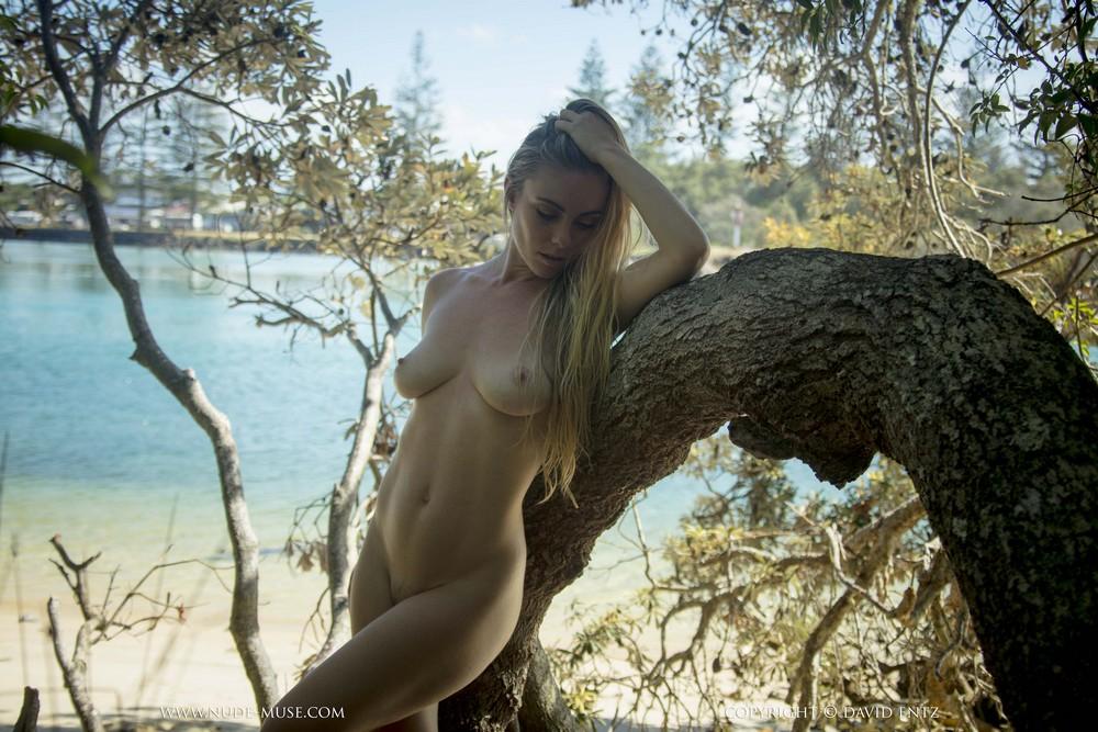 Обнаженная Venus Rose на дереве
