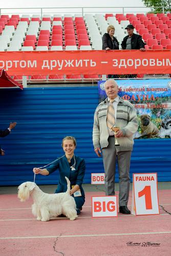 https://img-fotki.yandex.ru/get/165720/364041615.93/0_574119_379a81f1_orig.jpg