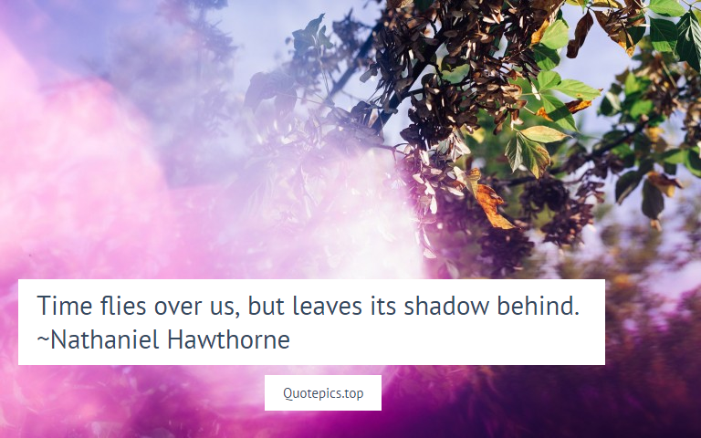Time flies over us, but leaves its shadow behind. ~Nathaniel Hawthorne