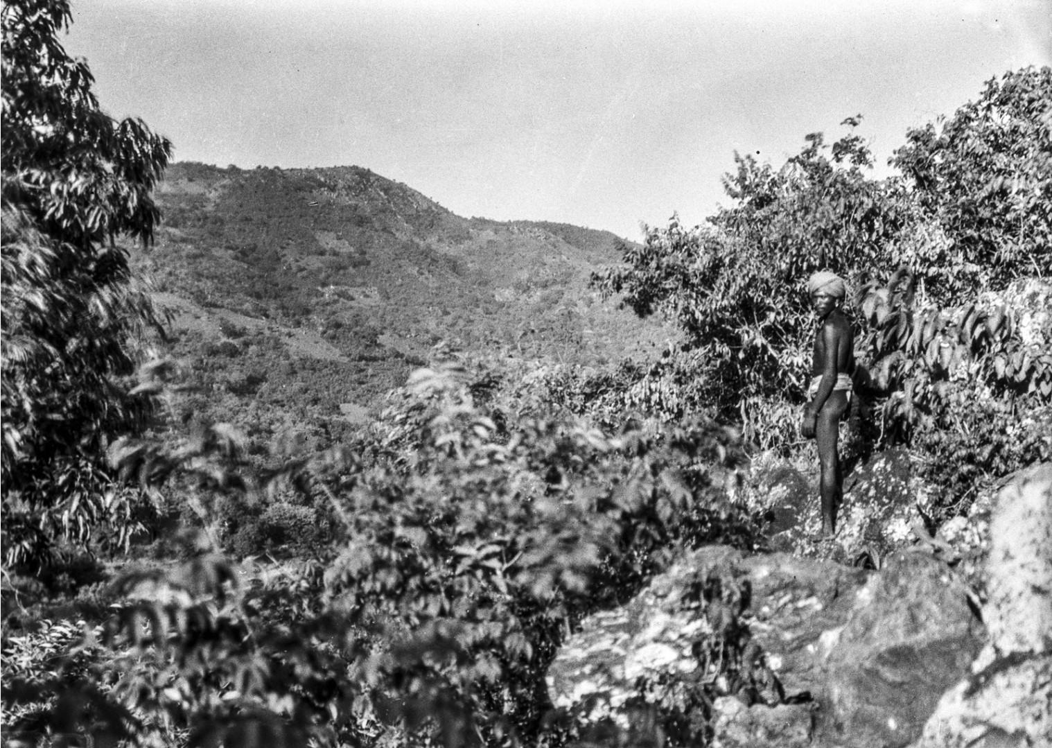 630. Раягада. Вид окружающей местности