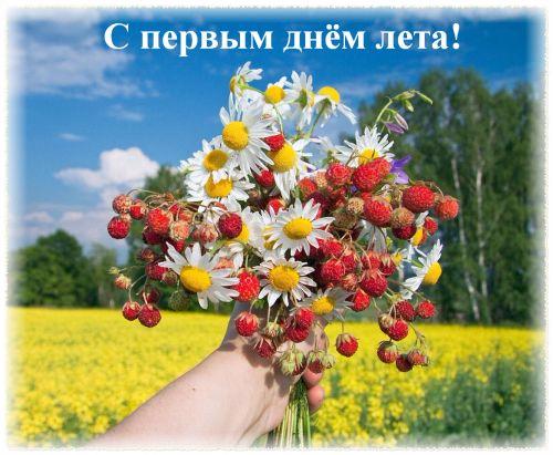 С первым днем лета! Ягоды и цветы на фоне поля и леса открытки фото рисунки картинки поздравления