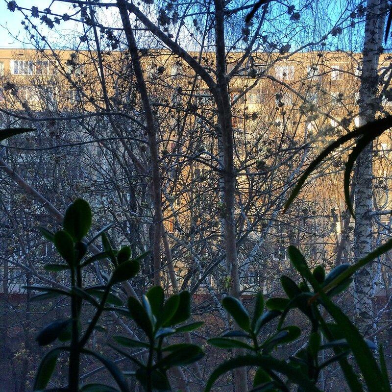 Окно в апрель