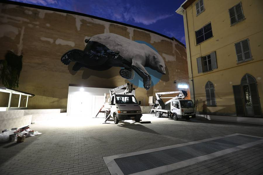Huge Polar Bear Mural in Turin