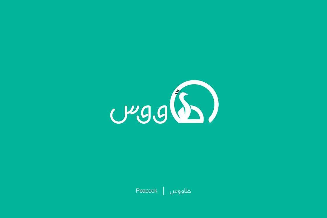 Expliquer l'Arabe avec de jolies illustrations