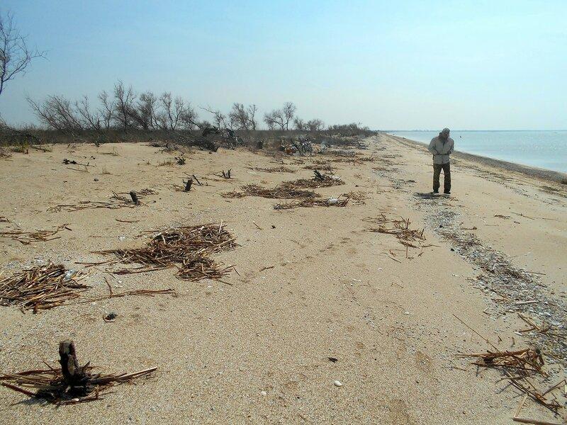 На просторе весеннего берега ... DSCN1712.JPG